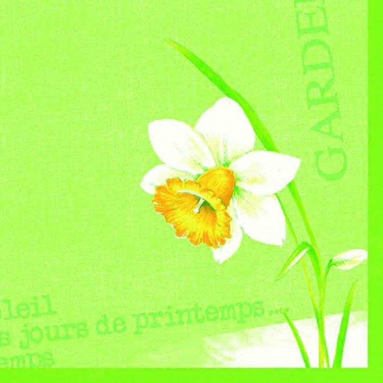 Ubrousek 40x40 DNL Spring day 50ks