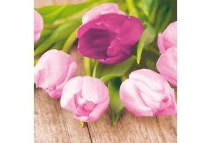 Ubrousek 33x33 3Vr Easter Tulip 20ks