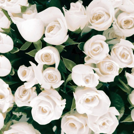 Ubrousek 33x33 3Vr Elegant Roses 20ks
