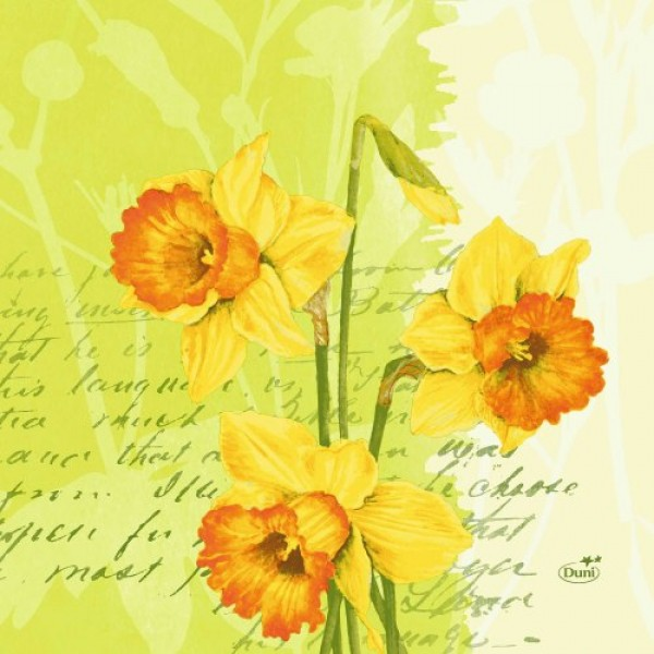 Ubrousek 40x40 DNL Spring Flowers 50ks