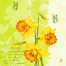 Ubrousek 40x40 D soft Spring Flower 60ks
