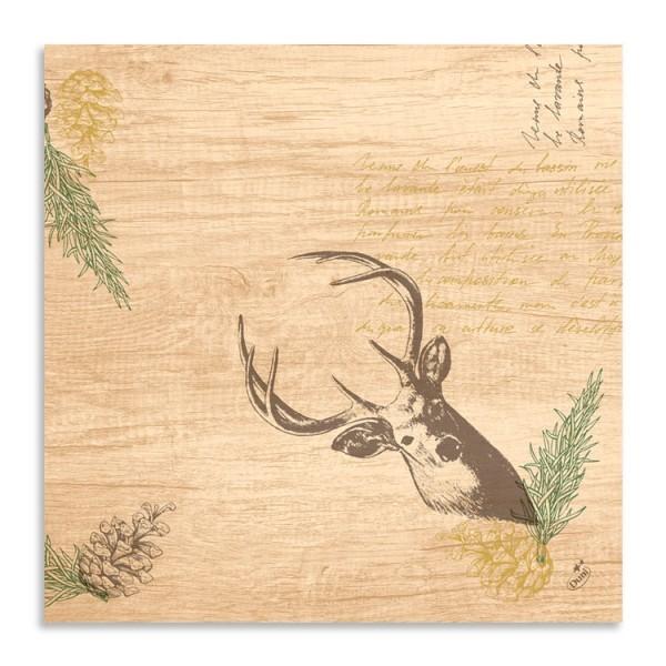 Ubrousek 40x40 Dsoft My Deer 60ks