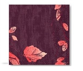 Ubrousek 40x40 Dsoft Painted Fall 60ks